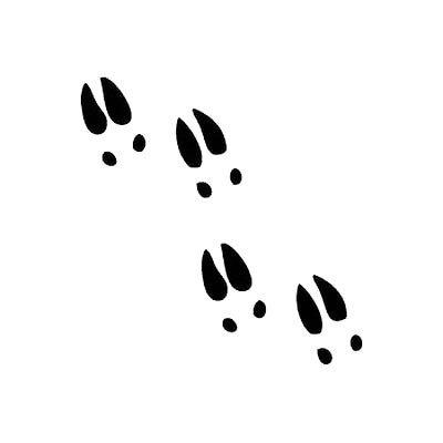 Deer Track Tattoo Design