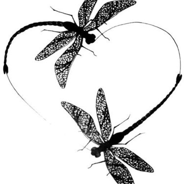 Dragonflies Heart Tattoo