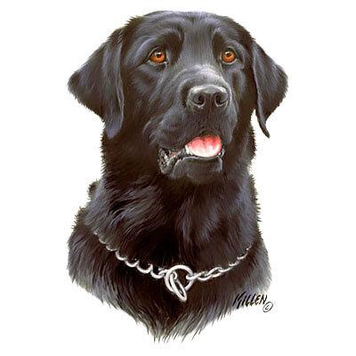 Labrador Dog Memorial Tattoo Design