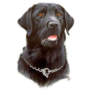 Labrador Dog Memorial Tattoo