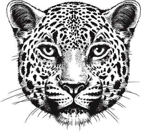 Leopard Face Tattoo Design
