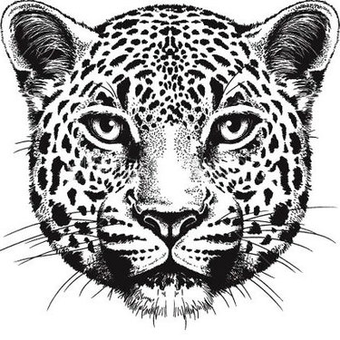 Leopard Face Tattoo