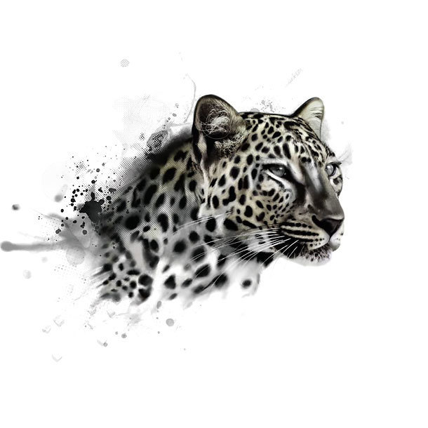 Leopard Head Tattoo Design