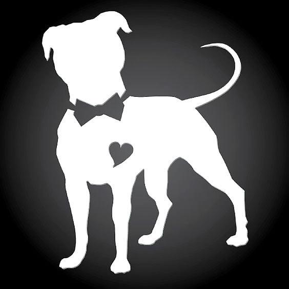 Pitbull With Bow Tattoo Design