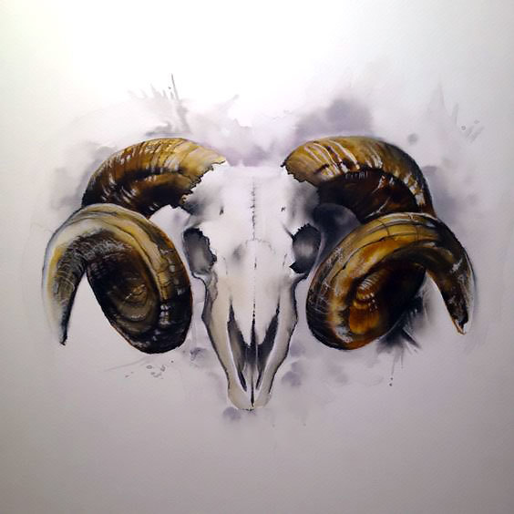 Ram Head Tattoo Design