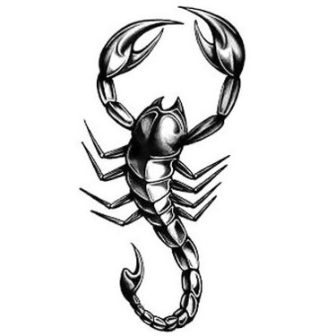Realistic Scorpion Tattoo