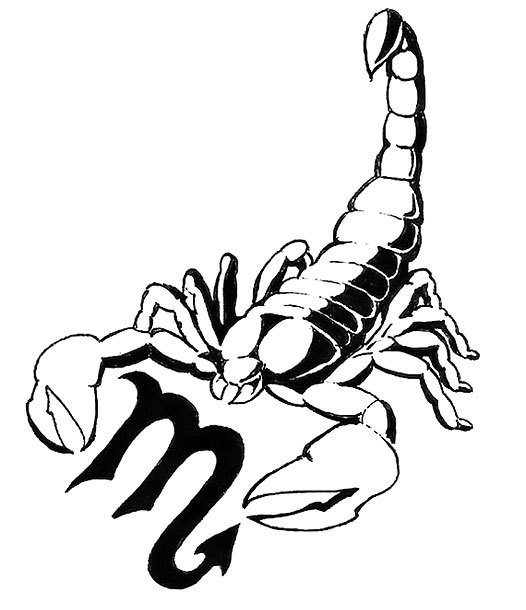 Scorpion Black Tattoo Design