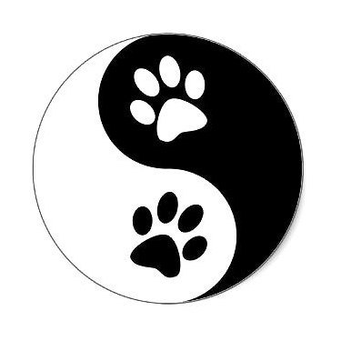 Yin Yang Dog Paws Tattoo