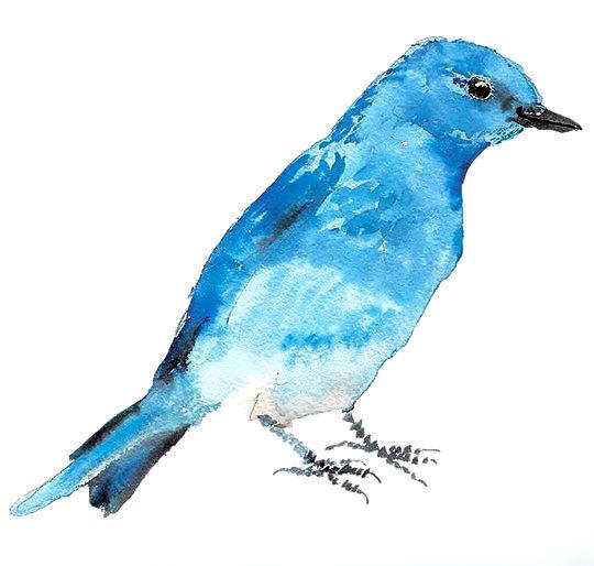 Awesome Bluebird Tattoo Design