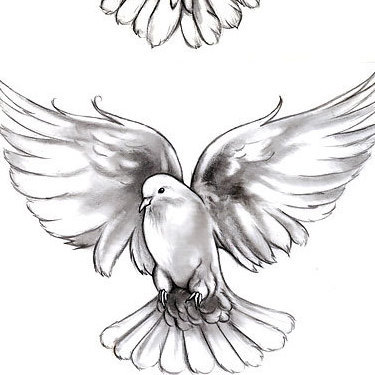 Beautiful Doves Tattoo