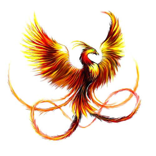 Beautiful Phoenix Tattoo Design