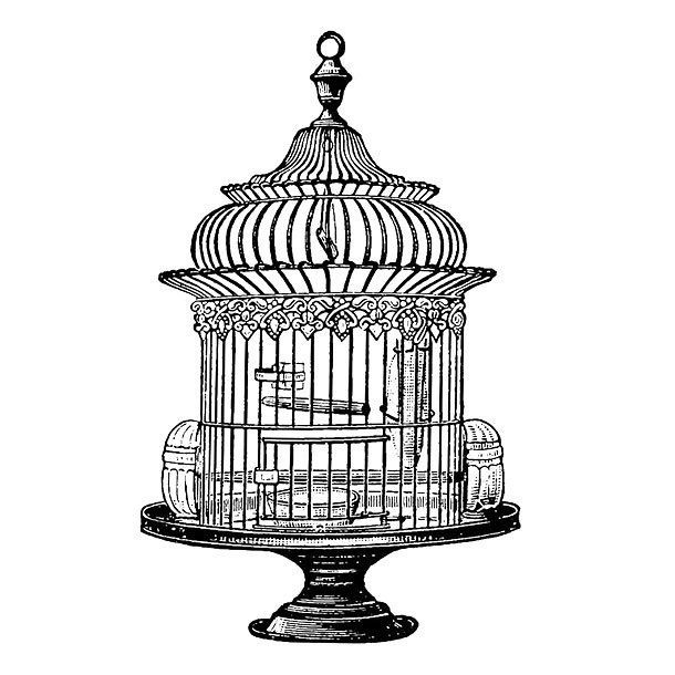 Best Birdcage Tattoo Design