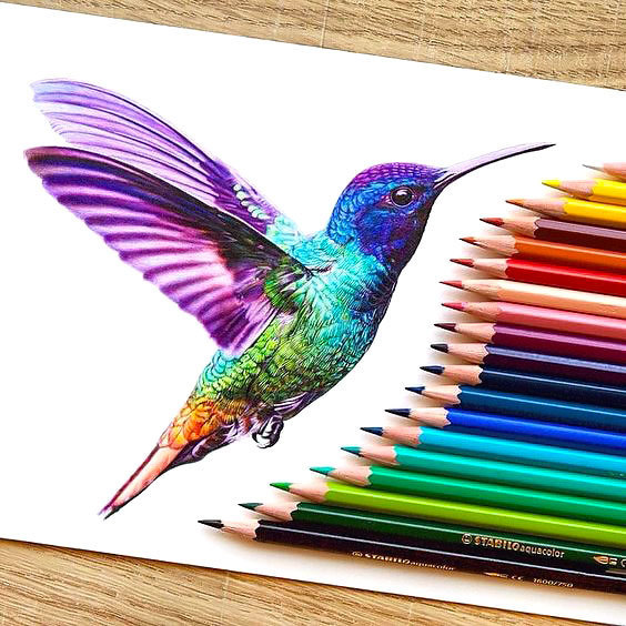 Best Hummingbird Tattoo Design