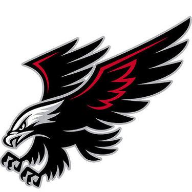 Best Tribal Hawk Tattoo
