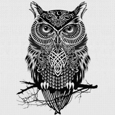 Best Gothic Owl Tattoo