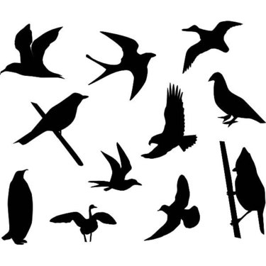 Birds Silhouettes Tattoo