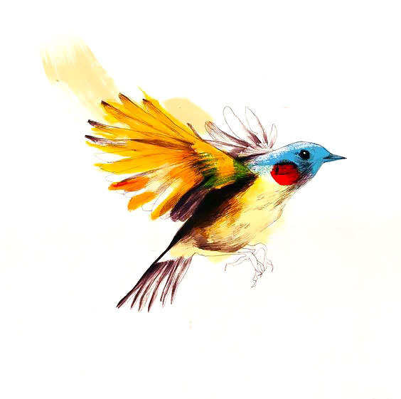 Colorful bird In Fly Tattoo Design