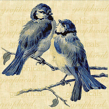 Bluebirds Looking At Each Other Tattoo