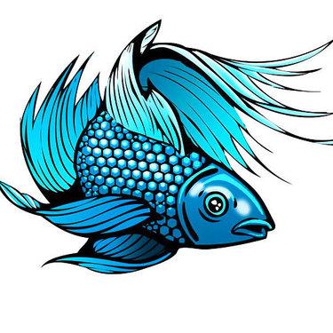 Blue Fish Tattoo