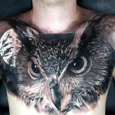 Best Realistic Owl Tattoo