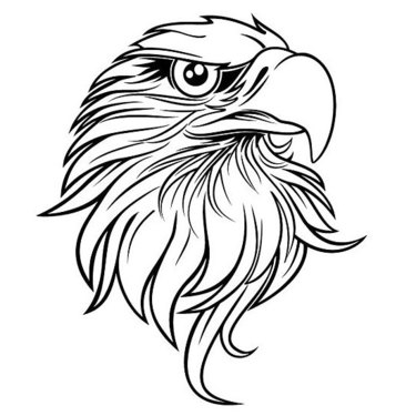 Cool Eagle Head Tattoo