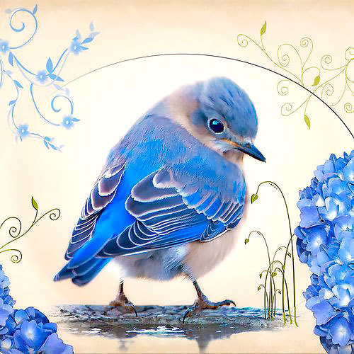 Cute Realistic Bluebird  Tattoo Design