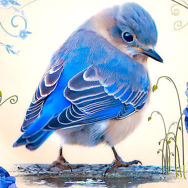 Cute Realistic Bluebird  Tattoo