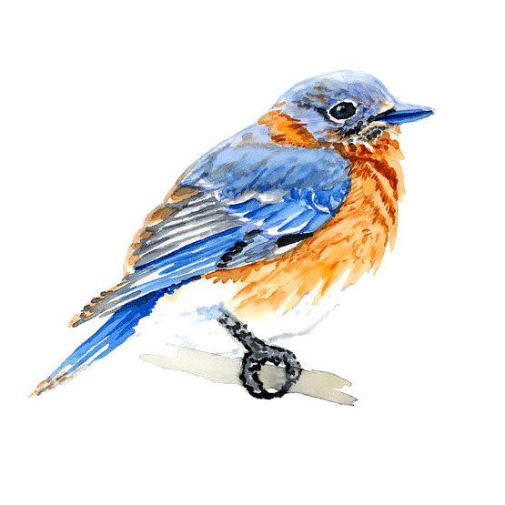 Cute Simple Bluebird Tattoo Design