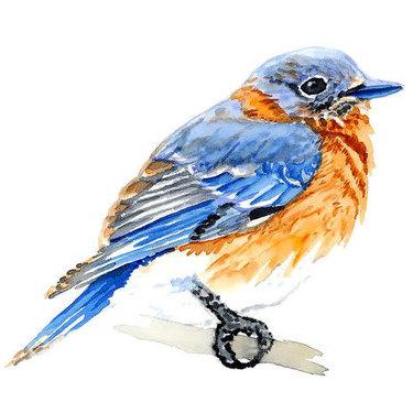 Cute Simple Bluebird Tattoo