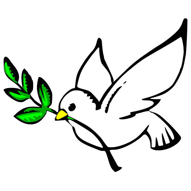 Dove and Olive Tattoo Design