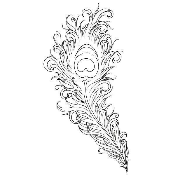 Fine Line Peacock Feather Tattoo Design
