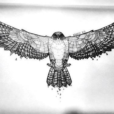 Geometric Hawk Tattoo