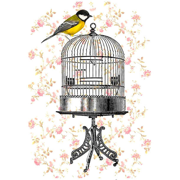 Sparrow on Birdcage Tattoo Design