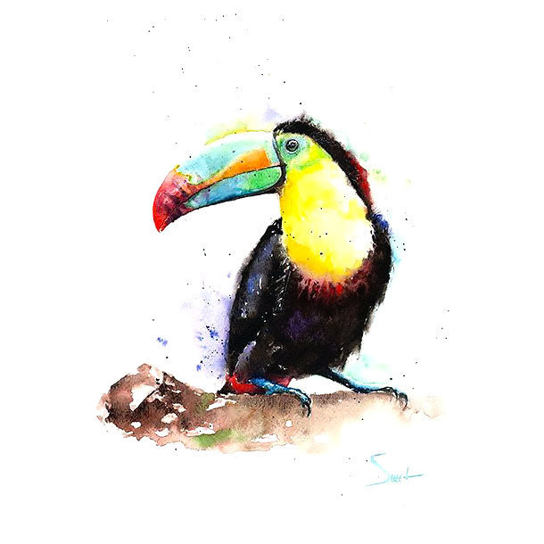 Toucan Tattoo Design