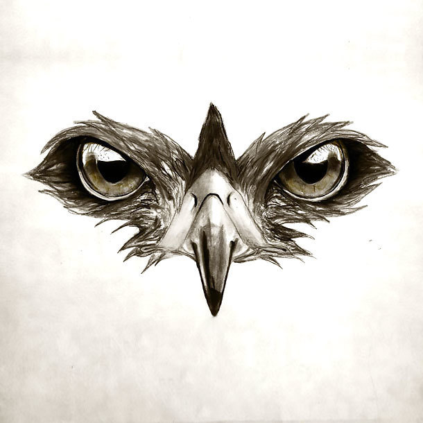 Hawk Eyes Tattoo Design