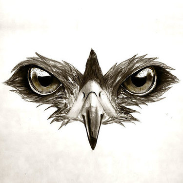 Hawk Eyes Tattoo