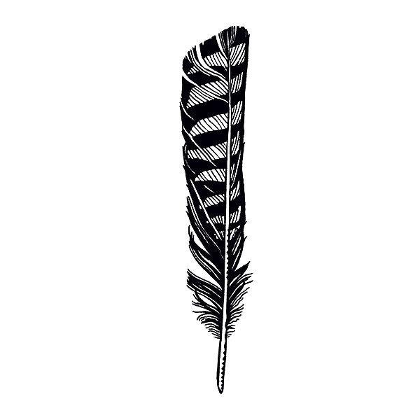 Hawk Feather Tattoo Design