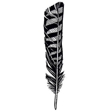 Hawk Feather Tattoo