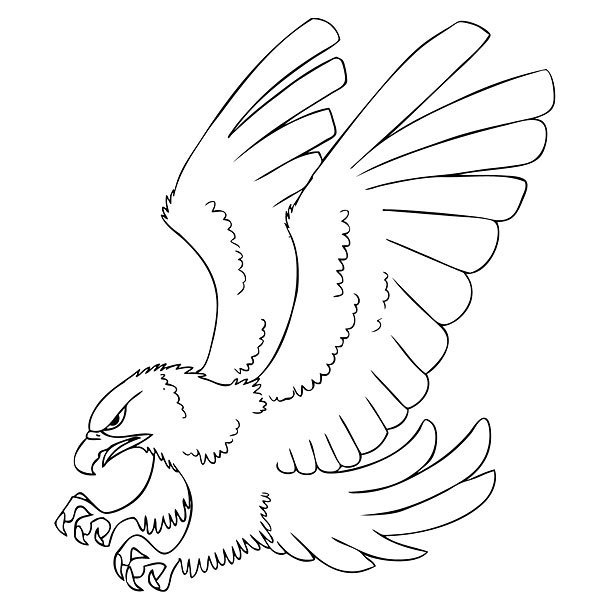 Hawk Outline Tattoo Design