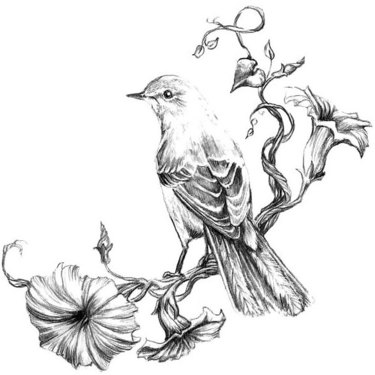 Mockingbird on Flowers Tattoo