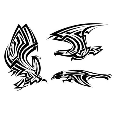 Tribal Hawks Tattoo