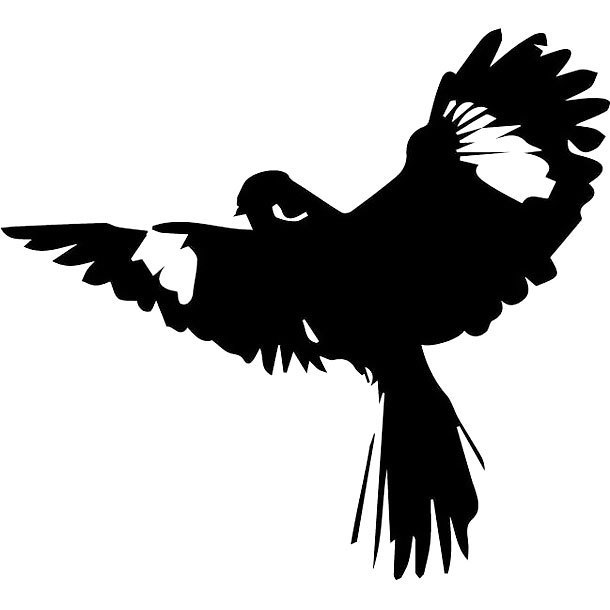 Tribal Mockingbird Tattoo Design