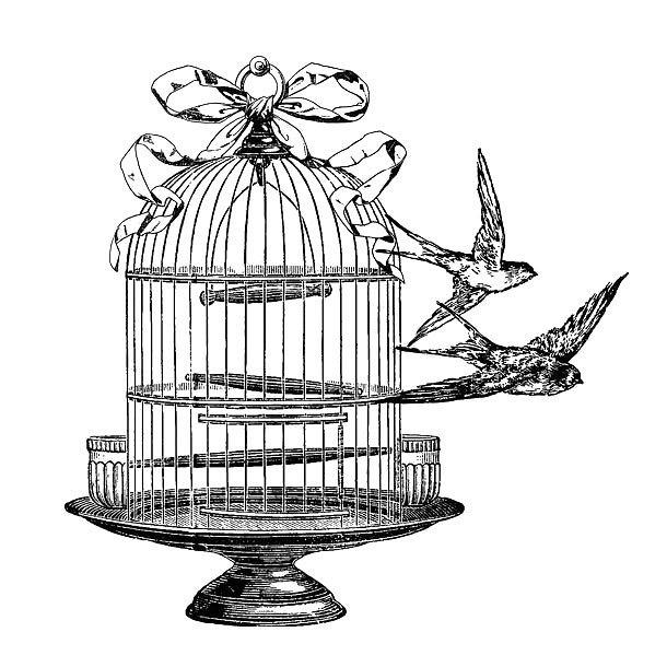 Vintage Birdcage Tattoo Design