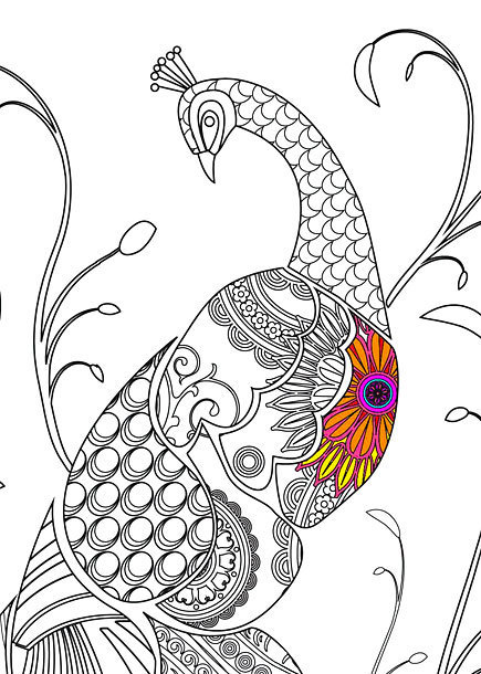 Peacock With Colorful Part Tattoo Design