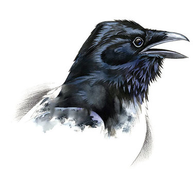 Raven Head Tattoo