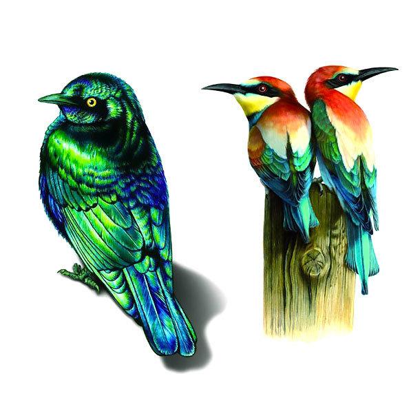 Realistic Birds Tattoo Design