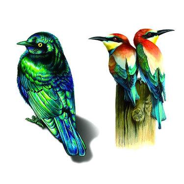 Realistic Birds Tattoo