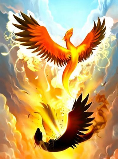 Resurrected Phoenix Tattoo Design