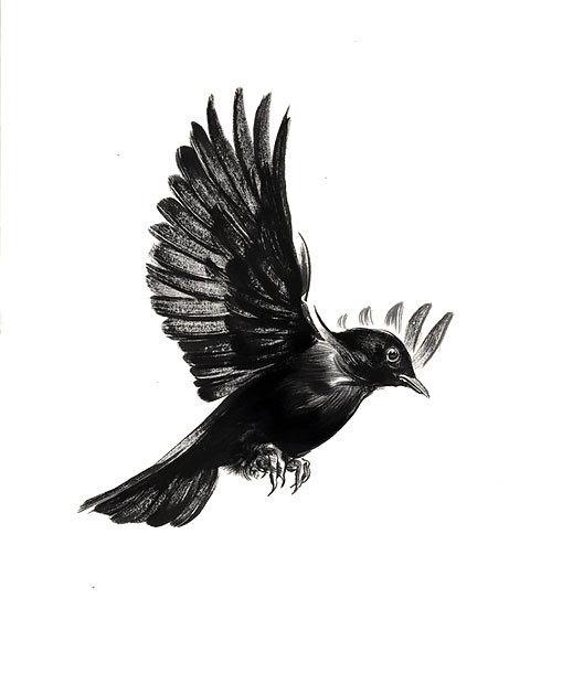 Simple Blackbird Tattoo Design