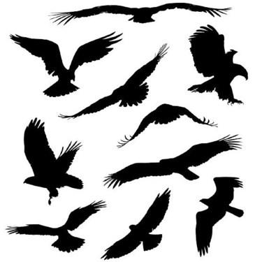 Small Eagles Tattoo
